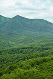 Green Mountain royalty free stock images