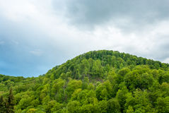 Green mountain on a background cloudy sky. Green hill. Mountain forest green. Royalty Free Stock Photos