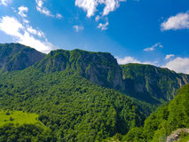 Green mountain Royalty Free Stock Photo