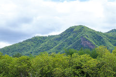 Green mountain and cloud Royalty Free Stock Photo