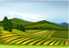 Green mountain landscape. Vector illustration of green mountain landscape Stock Photography