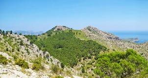 Green mountain landscape Stock Photos