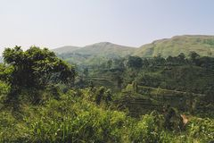 Green mountain landscape in Sri Lanka. Seen during the scenic train ride from Ella to Kandy. royalty free stock photos