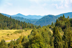 Green mountain landscape Royalty Free Stock Photos