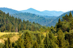 Green mountain landscape Royalty Free Stock Photo