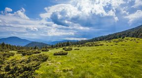 Green mountain meadow with mountain range in the background. Royalty Free Stock Photography