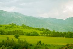 Green mountain meadow with mountain range. In the background stock image