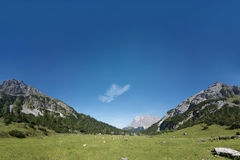 Green mountain meadow panorama in tyrol Stock Photography