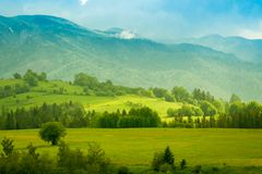 Green mountain meadow with mountain range. In the background stock photo