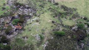 Green mountain panorama on coastline view from helicopter of Falkland Islands. Scenic peaks and ridges. Beautiful background of amazing nature. Travel and stock video