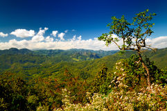 Green Mountain Range. And beautiful cloudscape in Mae Hong Son province, Northern of Thailand Royalty Free Stock Image