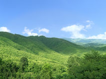 Green mountain range. Beautiful natural, Landscape of green mountain range full of natural green forest and beautiful blue sky in a many clouds and sunlight of Stock Photography