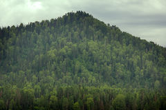 Green mountain ridge scene Royalty Free Stock Photography