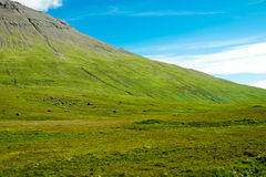 Green mountain in Scotland Royalty Free Stock Photography