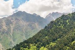 Green mountain slope Stock Photos
