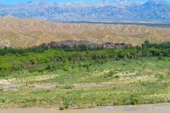 Green mountain valley Stock Image