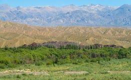 Green mountain valley Royalty Free Stock Photo