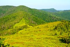 Green mountain view Stock Photography