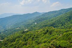 Green mountain view at Doi Suthep-Pui National Park, Chiang Mai,. Thailand. Forests in the park consists of evergreen forest on higher altitudes above 1000 Royalty Free Stock Image