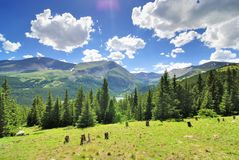 Green mountains royalty free stock image