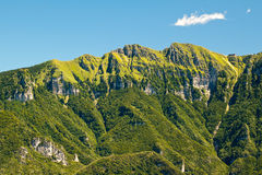 Green mountains stock images