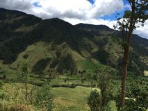 Green Mountains in Colombia area stock image