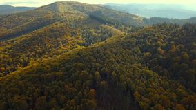 Green mountains in the fall stock video
