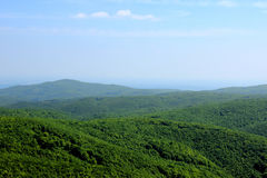 Green Mountains. Green Forested Hills in Mountain Range Stock Photo