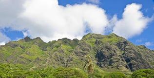 Green mountains Stock Photos