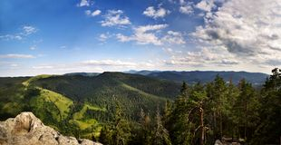 Green mountains of Karpaty, Ukraine in summer. royalty free stock photo