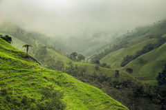 Green mountains landscape Royalty Free Stock Images