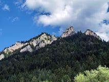 Green mountains, Poland Pieninsky park royalty free stock photo