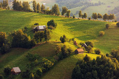 Green Mountains. Summer day in the Carpathian hills Royalty Free Stock Image