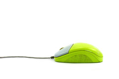 Green mouse Royalty Free Stock Image