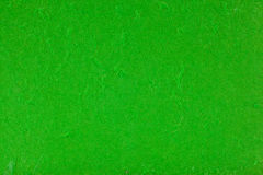 Green mulberry paper  texture Stock Photography