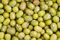 Green mung beans background Stock Photo