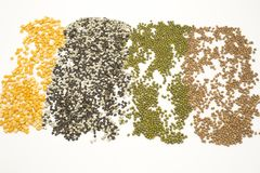 Green mung beans, chana dal, pigeon pea and split black lentil. royalty free stock photography