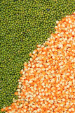 Green mung beans and corn grains Royalty Free Stock Photography