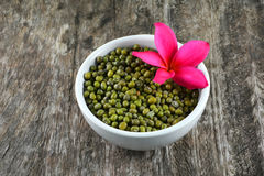 Green mung beans in cup Stock Images
