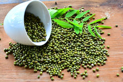 Green mung beans Glass Stock Images