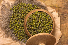 Green mung beans Royalty Free Stock Photography