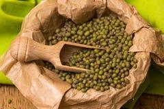 Green mung beans Stock Photography