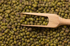 Green mung beans. Some green mung beans in a scoop Royalty Free Stock Photos