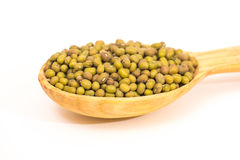 Green mung beans. Some green mung beans in a spoon on the white background Royalty Free Stock Photo