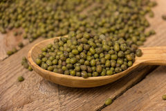 Green mung beans Royalty Free Stock Image