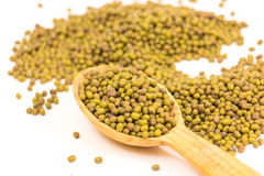 Green mung beans. Some green mung beans in a wooden spoon on a white background Stock Image