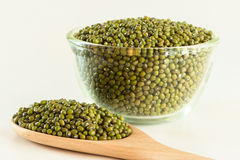 Green mung beans. On the white backgorund Royalty Free Stock Image