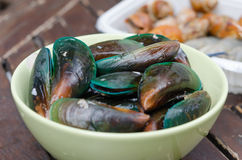Green mussel Stock Photography