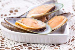 Green mussels Royalty Free Stock Photo