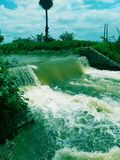 Green n water royalty free stock photography